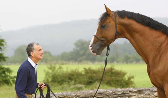 image cheval et cavalier