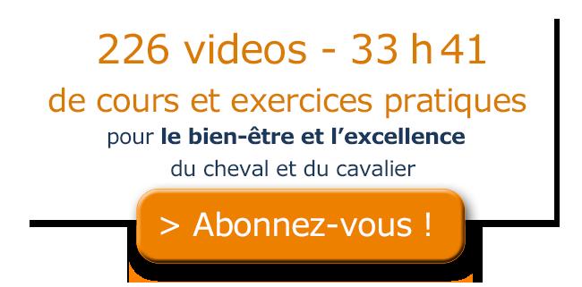 pave-contenu-videos.png