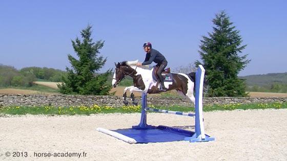 Riviere Bidet Pour Chevaux Horse Academy